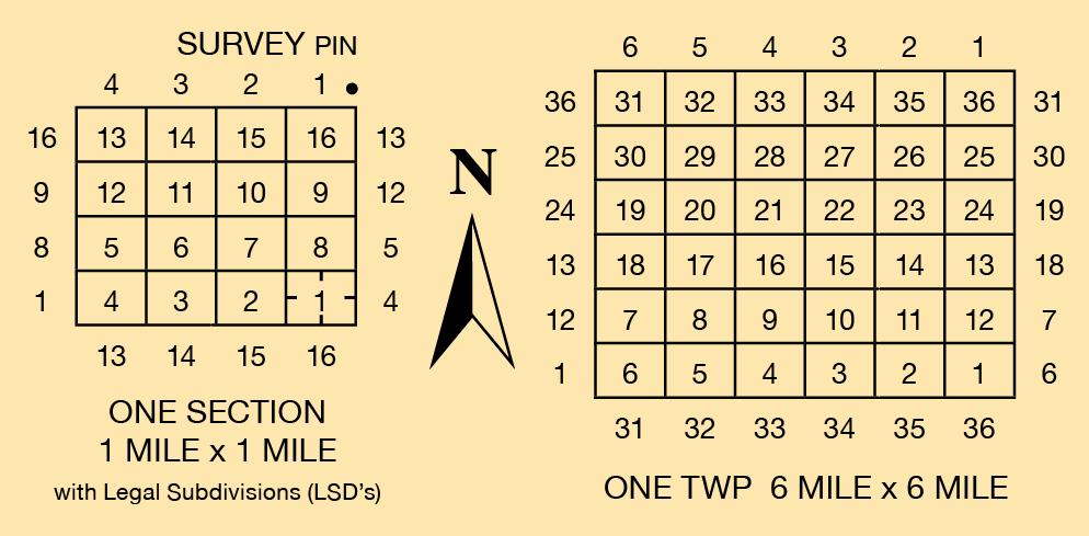 Survey_Diagram